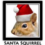 Santa Squirrel