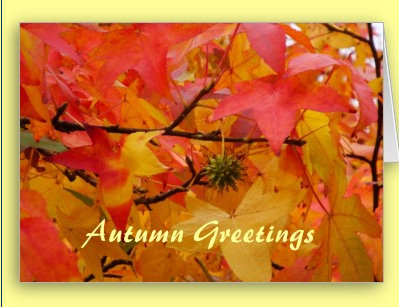 Herbst -Autumn-Greeting cards