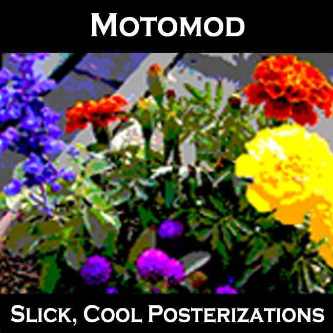 Motomod
