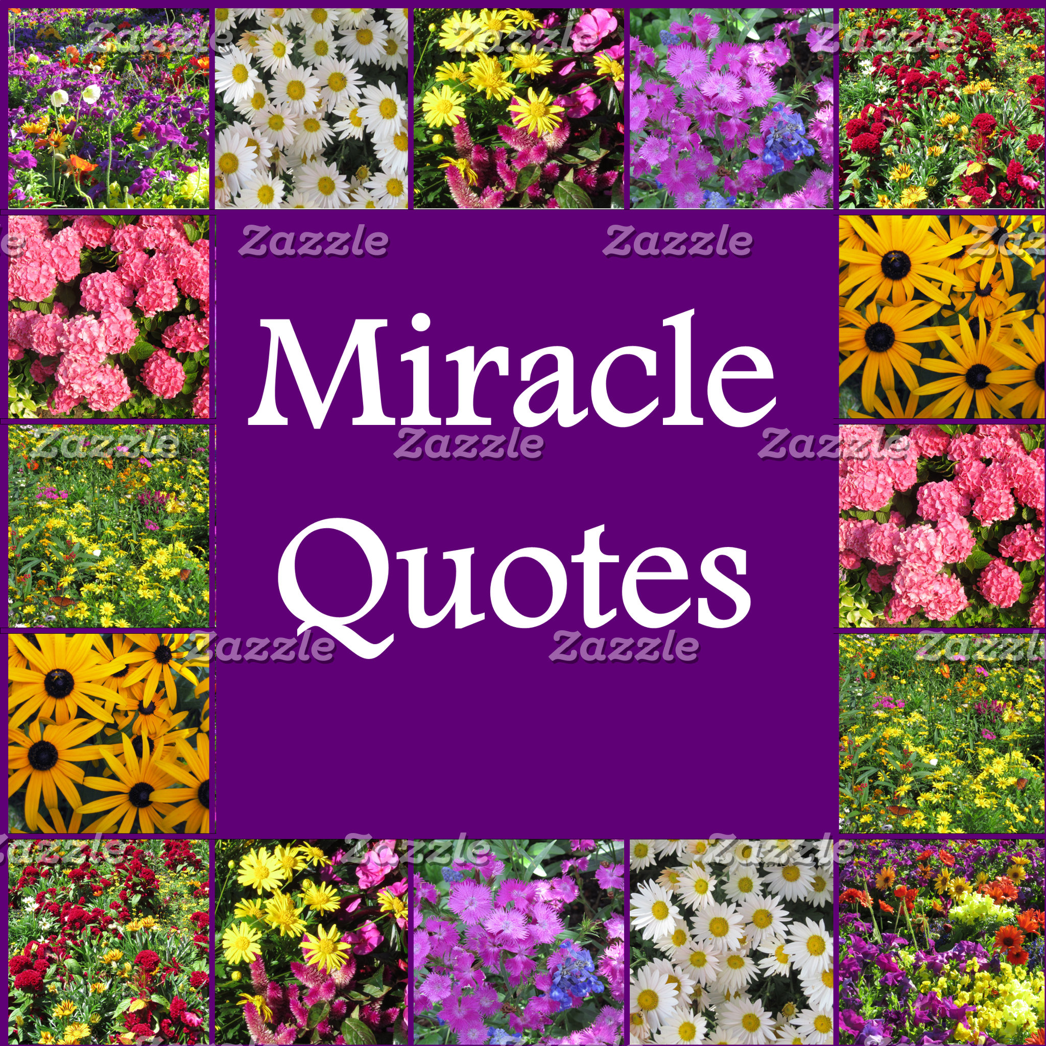 MIRACLE QUOTES