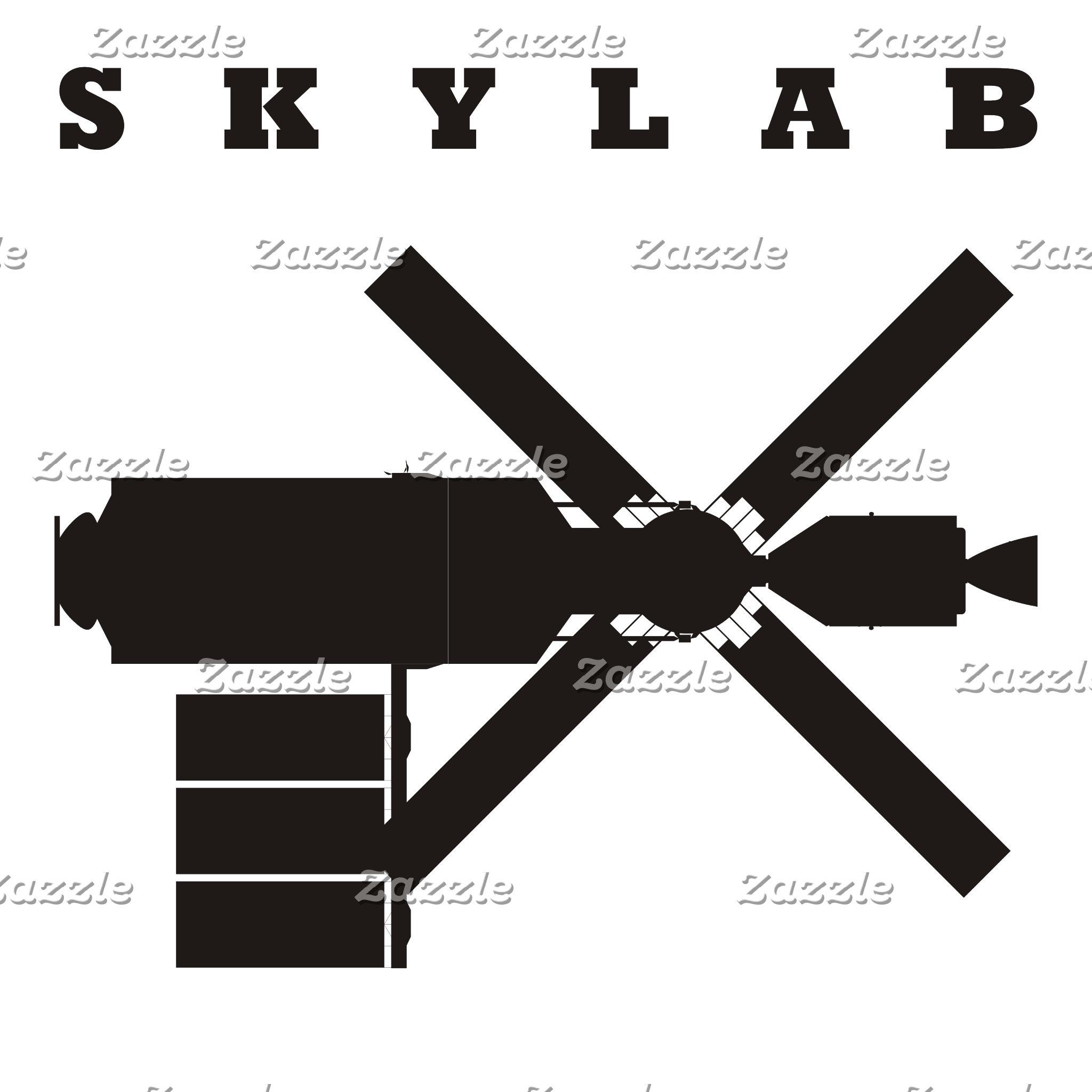 Skylab Silhouette