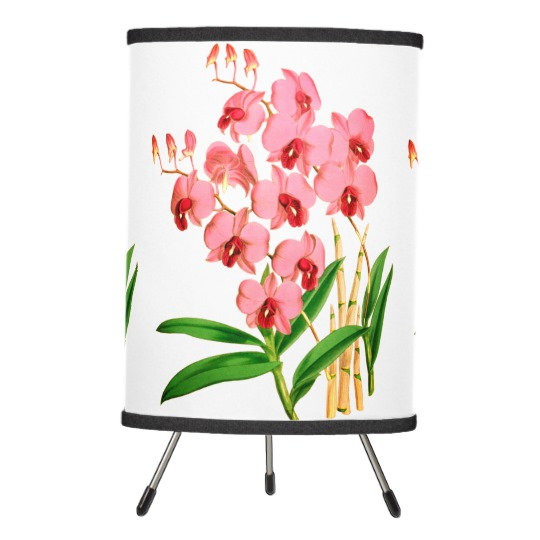 Exotic Pink Orchids Gifts And Decor