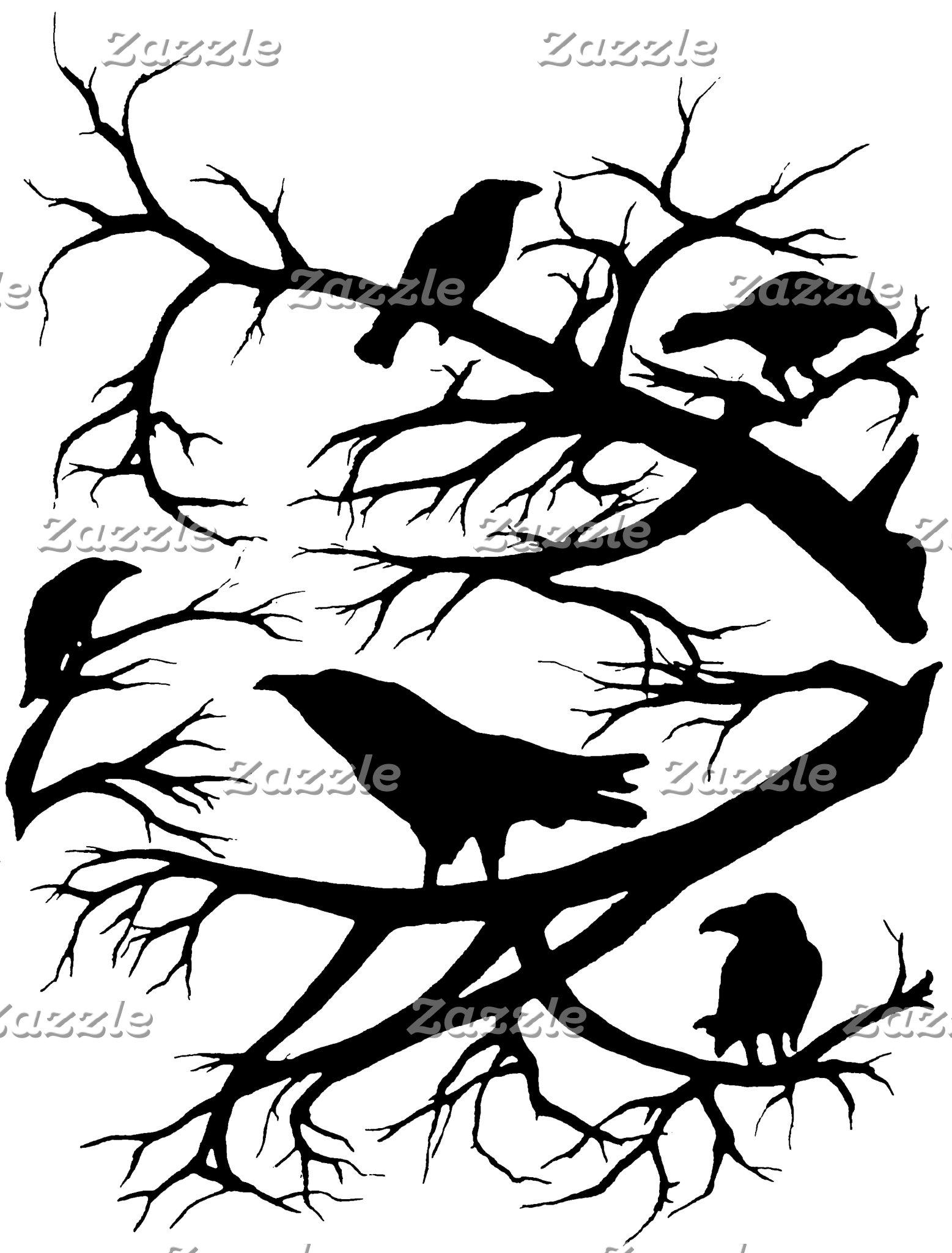 Corvidae, Corvus brachyrhynchos or Crow