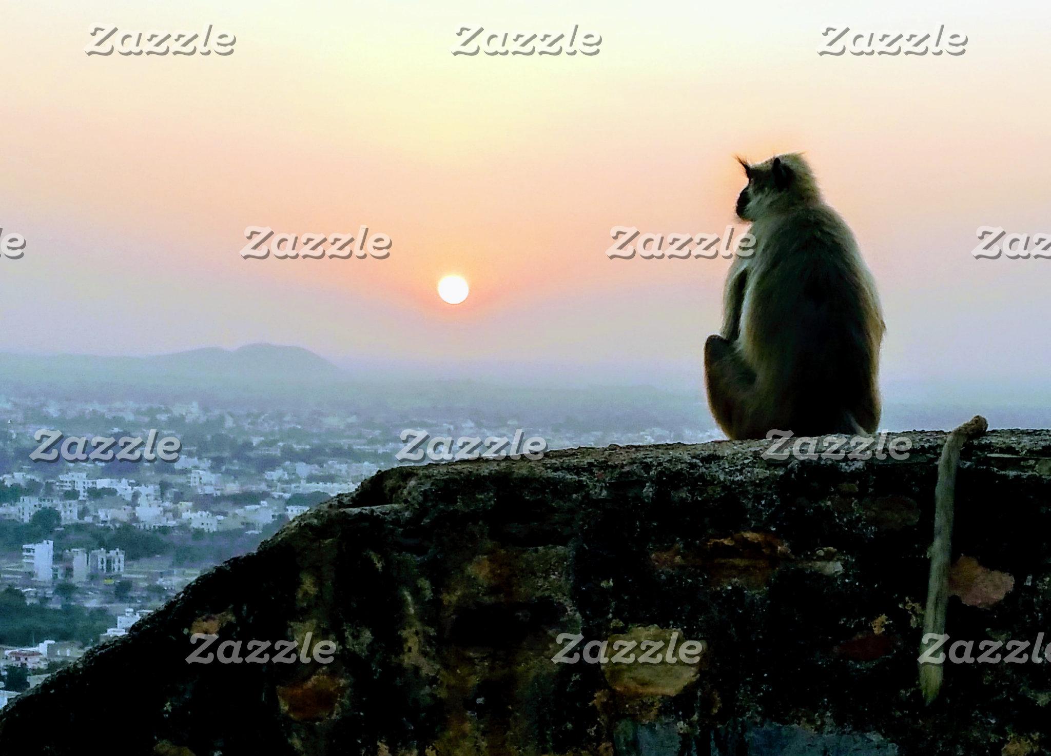 Monkey in Peace