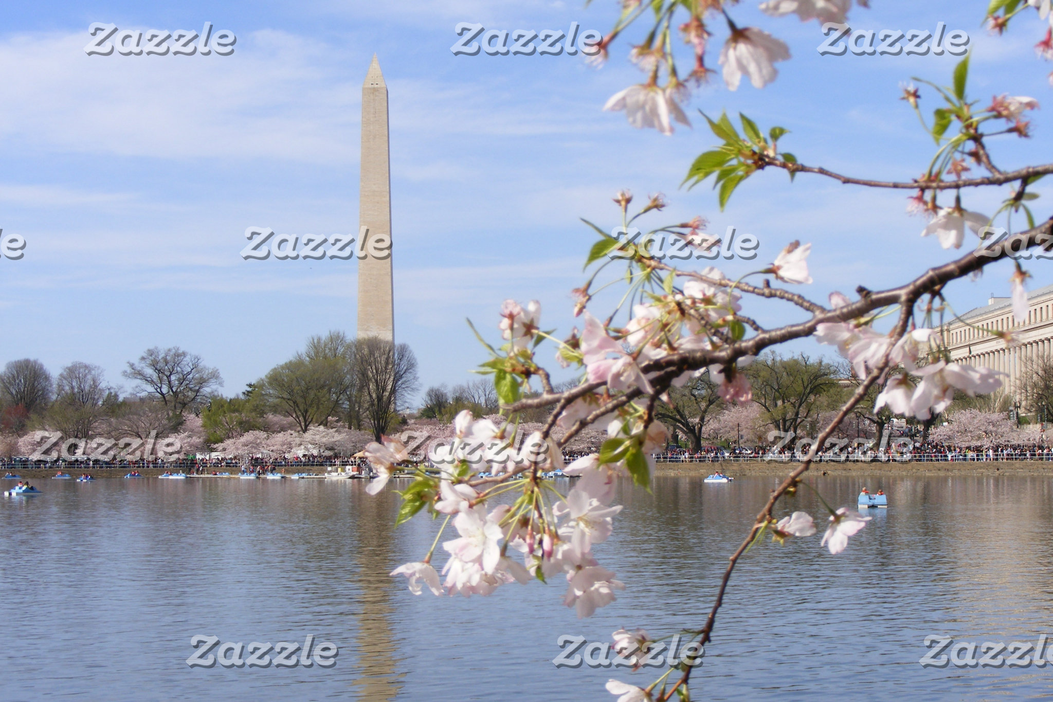 Washington Monument Scenery