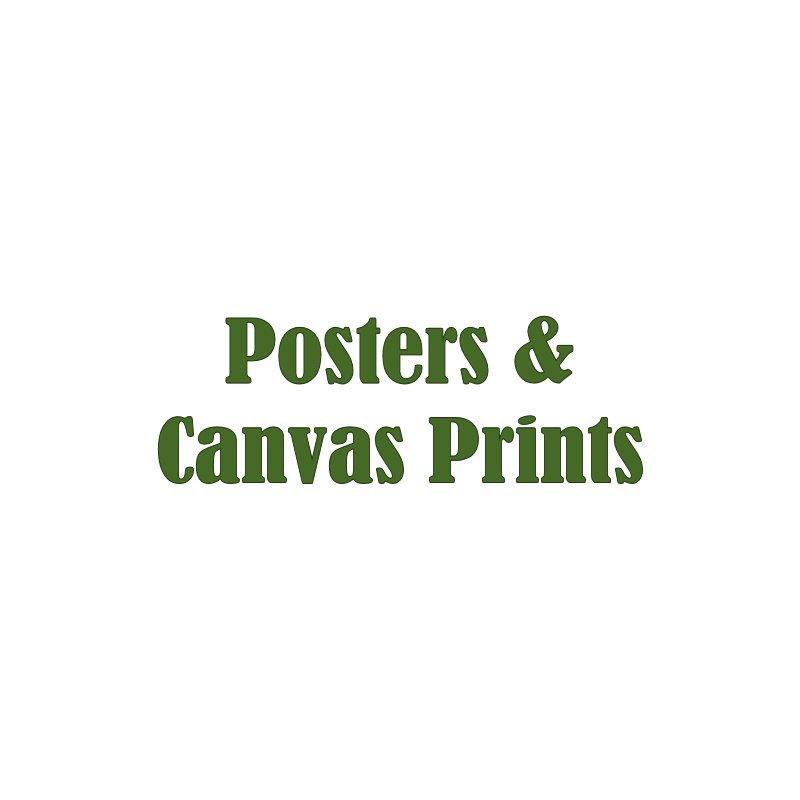 6. POSTERS - CANVAS Prints
