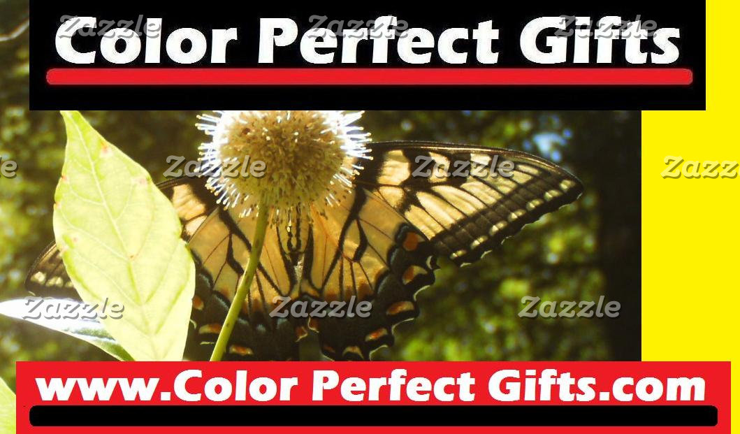 Color Perfect Gifts Extension Collection