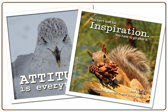 Gifts Inspired by Our Daily Inspirations Series