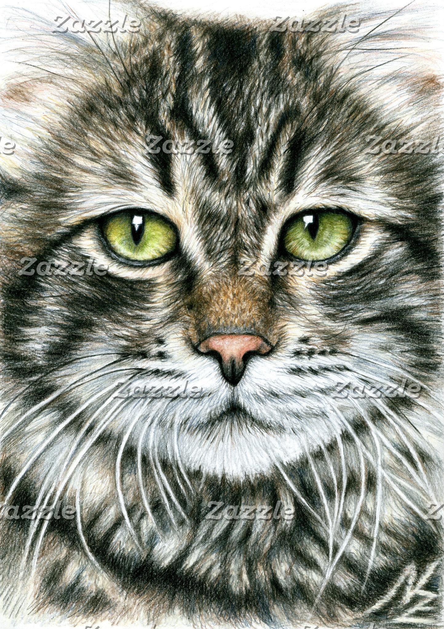 Arts & Cats