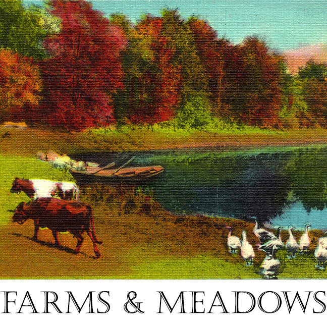 Farms and Meadows