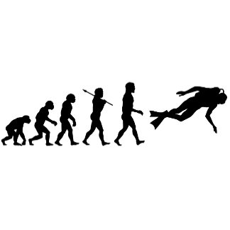 Evolution 3 ~ of Man Sports Hobbies Jobs