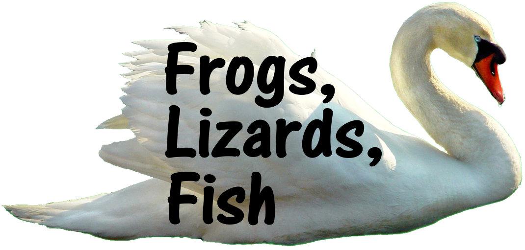 Frogs, Lizards, Fish