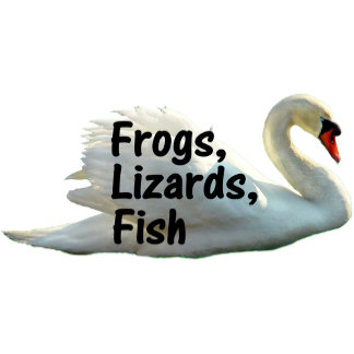 Frogs, Lizards, Fish