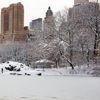 Central Park lake in winter, Manhattan, New York