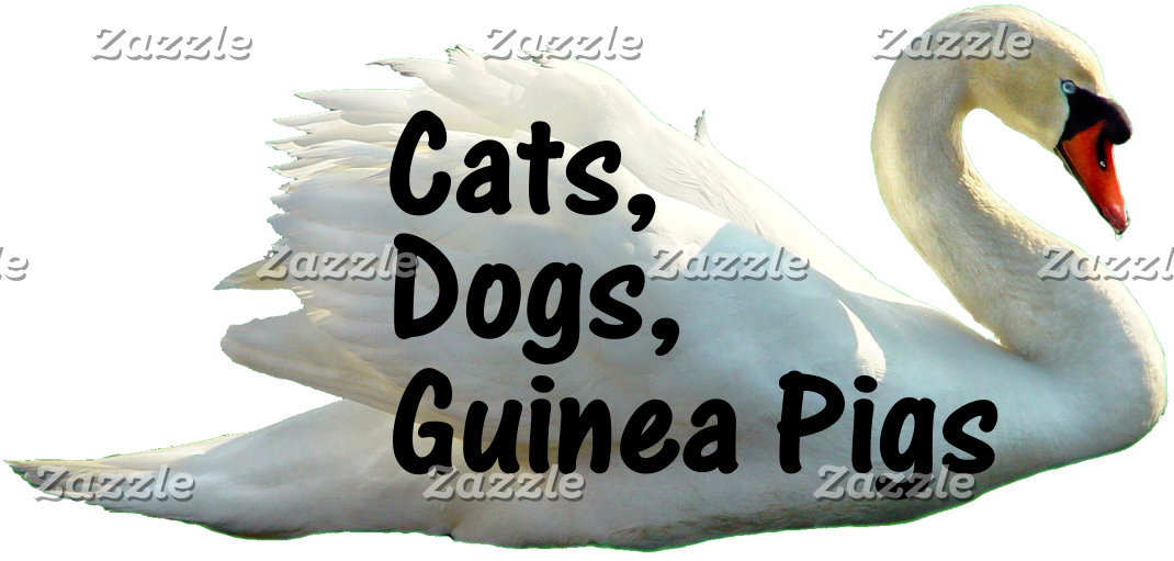 Cats, Dogs, Guinea Pigs