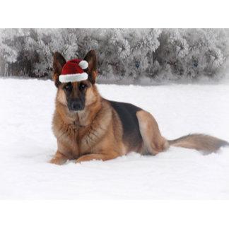 Holiday Shepherds