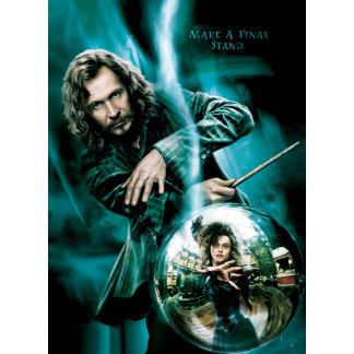Sirius Black and Bellatrix Lestrange