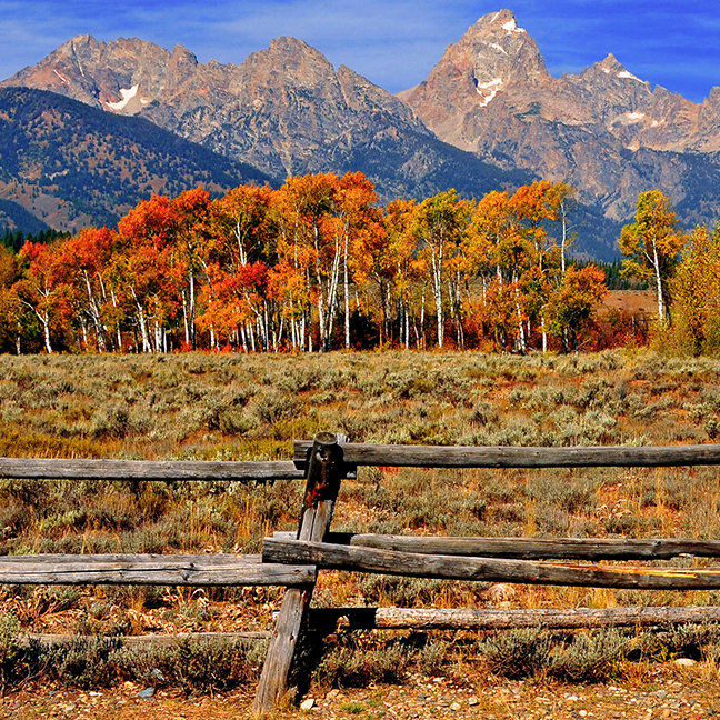 A Moment in Wyoming in Autumn