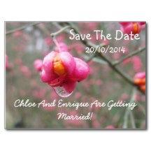 Wedding Invites And Postage