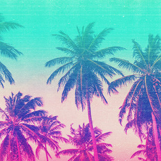 Tropical Paradise