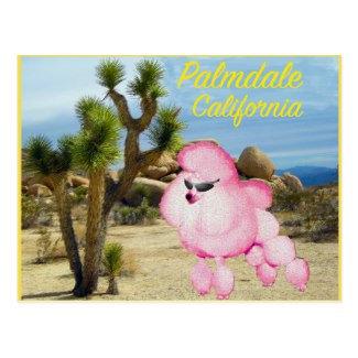 California Area Items