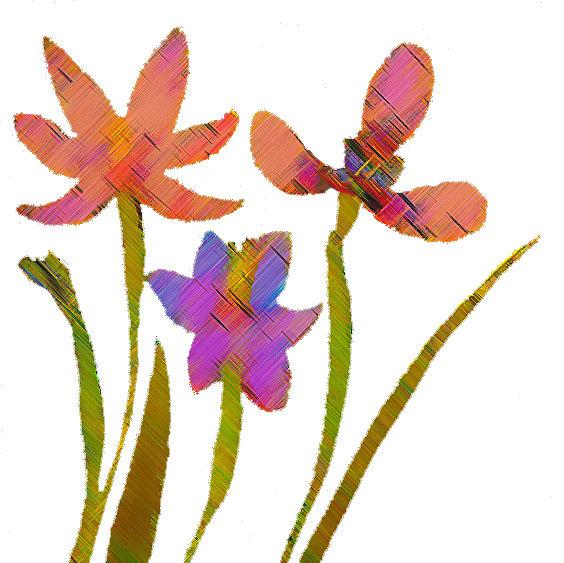 Spring Bulbs Floral