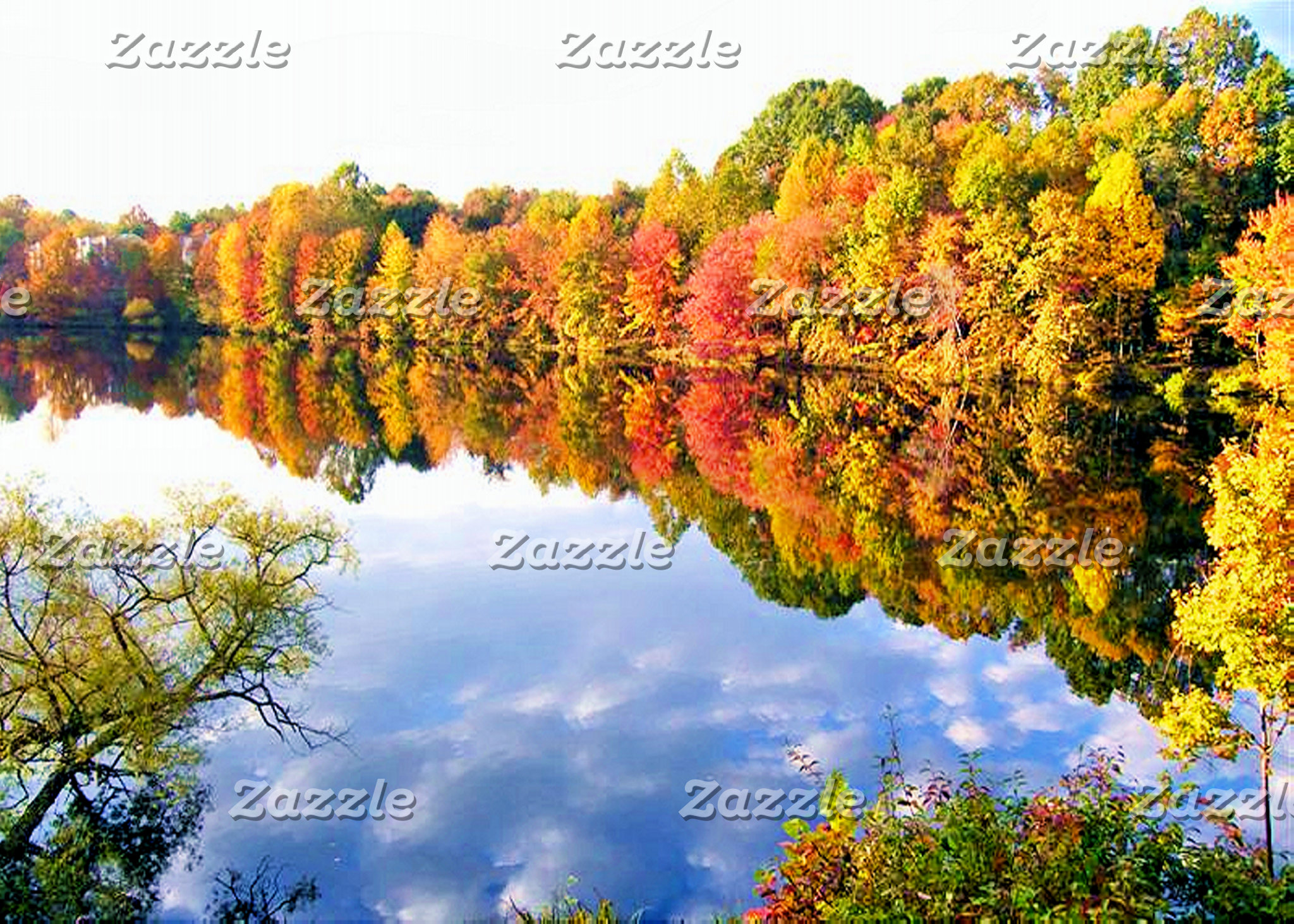 AUTUMN/FALL FOLIAGE
