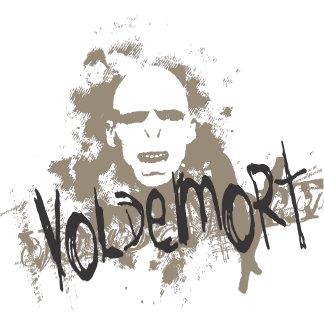 Voldemort Dark Arts Graphic