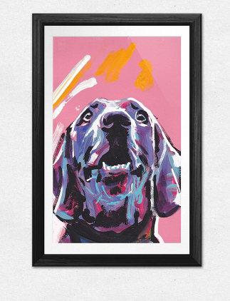 Tiere sind schön - hol Sie Dir als Poster nach Hause!