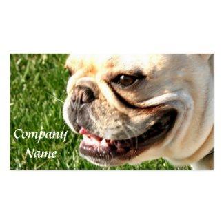 Französische Bulldoggen-Visitenkarten Visitenkarten