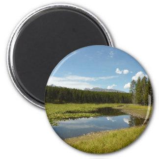Swan See I an großartigem Teton Nationalpark Runder Magnet 5,1 Cm
