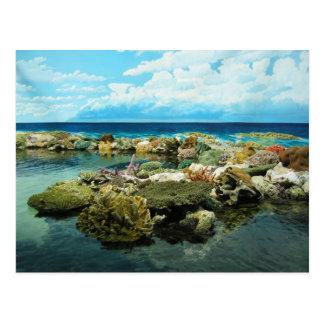 Sydney Great Barrier Reef Postkarte