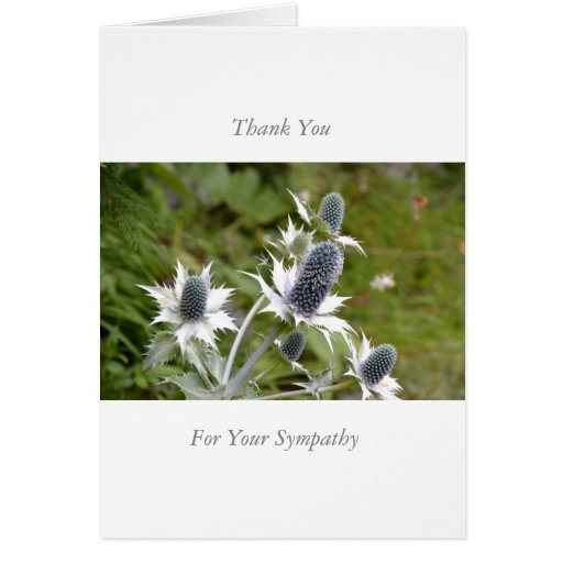 Sympathy/Memorial Thank You Note Card Blue Thistle Grußkarte
