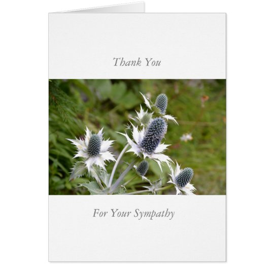Sympathy/Memorial Thank You Note Card Blue Thistle Karte