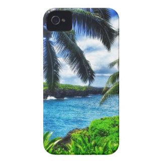 Szene des Hawaiianer-IMG_1122 4 iPhone 4 Cover