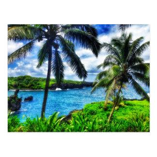 Szene des Hawaiianer-IMG_1122 4 Postkarte