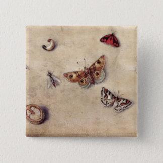 T31566 eine Studie der verschiedenen Insekten, der Quadratischer Button 5,1 Cm