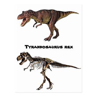 T-rex Fleisch-n-Knochen, Postkarte