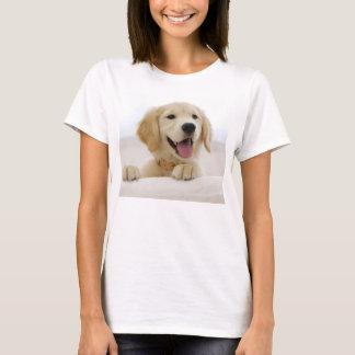 t-shirt basische Frau golden retrieverhund