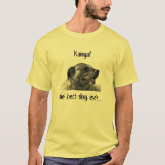 t-shirt mit kangal