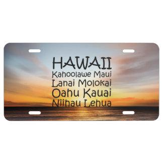 T-STÜCK Hawaii US Nummernschild