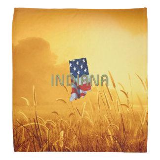 T-STÜCK Indiana-Patriot Kopftuch