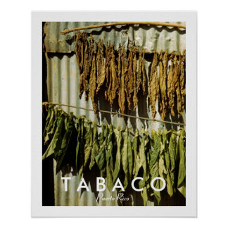 Tabak-Blätter, Geschichte, Puerto Rico Poster