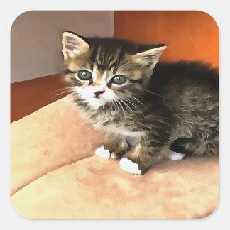 Tabby-Kätzchen genanntes Fräulein Pip Squeak Quadratischer Aufkleber