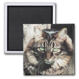 Tabby-Katze Quadratischer Magnet