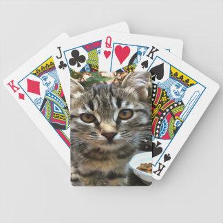 Tabby-Katzen-Kätzchen, das Blickkontakt aufnimmt Bicycle Spielkarten