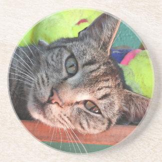 Tabby-Katzen-Liebe Sandstein Untersetzer