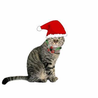 "Tabby-Sankt-Katze mit Red Hat 2"""" Verzierung x3 Fotoskulptur Ornament"
