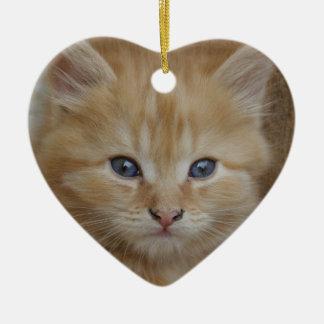 Tabby-Tomcat-Kätzchen Keramik Ornament