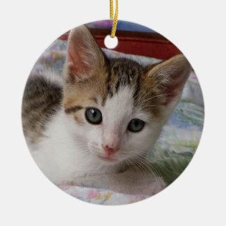 Tabby u. weiße Kätzchen-Verzierung Keramik Ornament